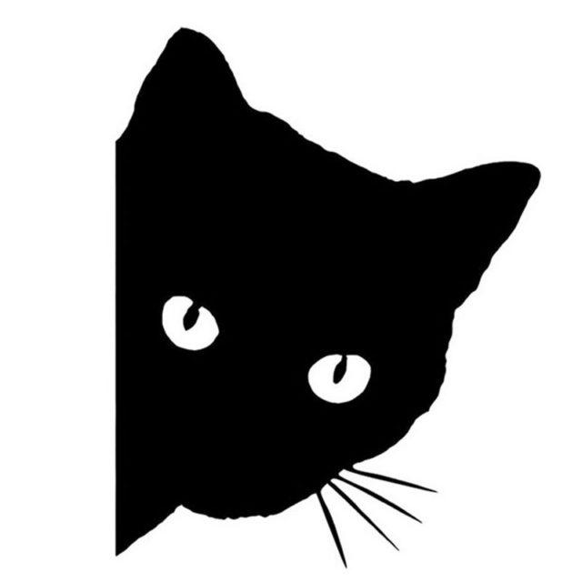 Cat Face Car Sticker